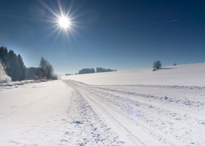 Zimní běžkařské stopy kolem Horní Plané